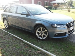 AUDI A4  Avant 2.0 TDI 170 CV F.AP. Advanced