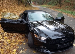 FORD Mustang cabrio 2.3 ecoboost premium