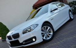 BMW 520 d 190 CV Business