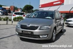SKODA Octavia 1.6 TDI CR 110 CV DSG Wagon Executive