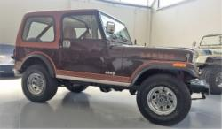 JEEP CJ-7 LAREDO AMC 304