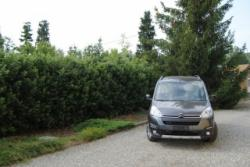CITROEN Berlingo Multispace BlueHDi 100 XTR
