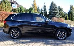 BMW X5 xDrive25d Business 231 CV